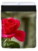Red Rose Wall Art Print Duvet Cover