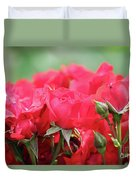 Roses Close Up Nature Spring Scene Duvet Cover