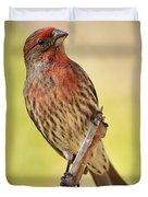 Rosy Finch Macro Duvet Cover