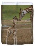 Rothschild Giraffe Giraffa Duvet Cover by San Diego Zoo