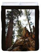 Round Meadow Giant Sequoia Duvet Cover