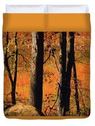 Round Valley State Park 3 Duvet Cover