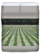 Rows Of Crops Duvet Cover
