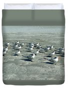 Royal Terns #4 Duvet Cover