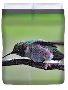 Rubbing Its Bill - Ruby-throated Hummingbird Duvet Cover