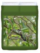 Ruby-throated Hummingbird - Female Duvet Cover
