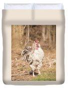 Ruffled Rooster Duvet Cover