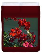 Rufus Humming Bird At Sunrise  Duvet Cover