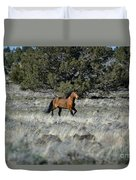 Running Bachelor Stallion Duvet Cover