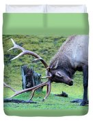Rutting Bull Elk Duvet Cover