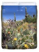 Sabino Canyon 2 Duvet Cover