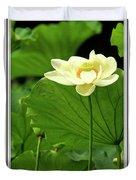 Sacred Lotus In Black Frame Duvet Cover