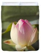 Sacred Lotus - Nelumbo Duvet Cover