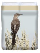 Sage Thrasher On Perch Duvet Cover