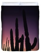 Saguaro Cactus Are Silhouetted By An Duvet Cover