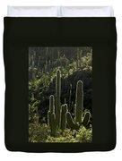 Saguaro Cactus Backlit Duvet Cover