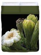 Saguaro Cactus Flower Duvet Cover