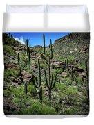 Saguaro Hillside Duvet Cover