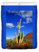 Saguaro Np Duvet Cover