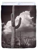 Saguaro Sunset Arizona Bw Duvet Cover