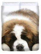 Saint Bernard Puppy Sleeping Duvet Cover