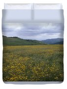 Salisbury Potrero - Sierra Madre Mountains Duvet Cover