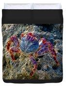 Sally Lightfoot Crab 1 Duvet Cover