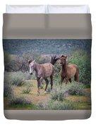 Salt River Wild Horses-img_747217 Duvet Cover
