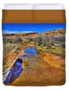 Salt Wash Near Wolf Ranch Arches Np Moab Utah Duvet Cover