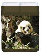San Diego Panda Duvet Cover