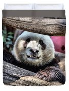 San Diego Zoo California Giant Panda Duvet Cover