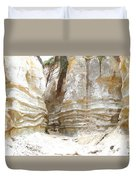Sand Canyon Of San Clemente Duvet Cover