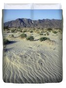 Sand Dunes And San Ysidro Mountains Duvet Cover