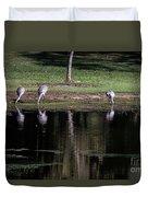 Sand Hill Cranes Dining Room Duvet Cover