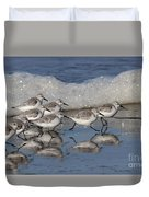 Sanderlings Duvet Cover