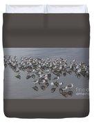 Sanderlings On The Shore Duvet Cover