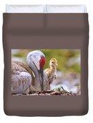 Sandhill Crane 3 Duvet Cover