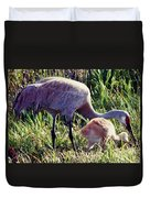 Sandhill Crane And Chick Duvet Cover