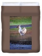 Sandhill Crane Painted Duvet Cover