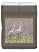 Sandhill Crane Stroll, Antigone Canadensis Duvet Cover