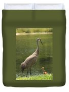 Sandhill Crane With Baby Chick Duvet Cover