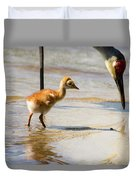 Sandhill Crane With Chick Duvet Cover