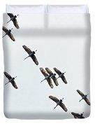 Sandhill Cranes 4 Duvet Cover