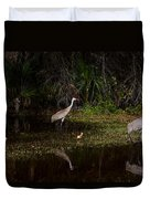 Sandhill Cranes And Chicks Duvet Cover