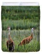 Sandhill Cranes II Duvet Cover
