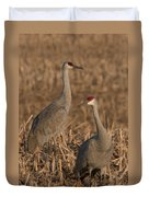 Sandhill Cranes On Watch Duvet Cover