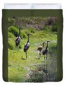 Sandhill Family By The Pond Duvet Cover