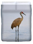 Sandhill Standing In Peaceful Pond Duvet Cover