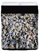 Sanibel Island Seashells I Duvet Cover