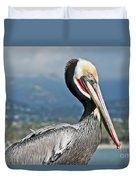 Santa Barbara Brown Pelican Duvet Cover